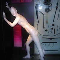 Amora sex academy