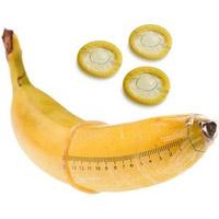 Как измерить член?